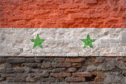 120825_ans_syria2.jpg